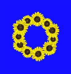 Floral wreath with sunflowers isolated on blue background