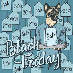 Vector illustration of cat on Black Friday