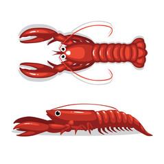 Cute Lobster Top Side View Cartoon Pose