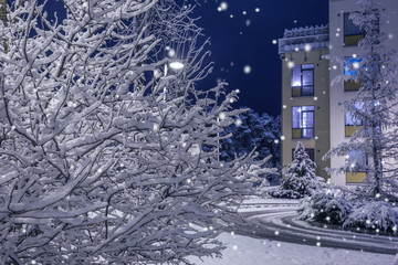 Christmas night.Snow night. Nature and architecture background