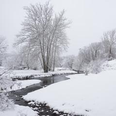 Hudson Valley Creek in a Snowy Winter Landscape