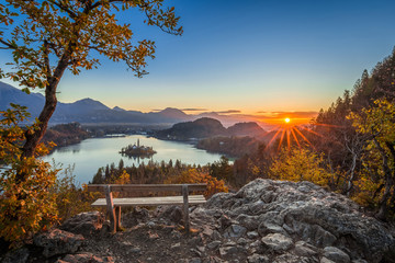 Bled, Slovenia - Beautiful panoramic skyline autumn view with hilltop bench and tree and colorful sunrise of Lake Bled and Pilgrimage Church of the Assumption of Maria