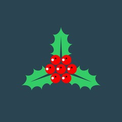 Holly flat vector icon