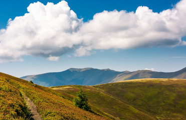 mountain ridge behind the rolling hills under the blue sky with huge cloud. wonderful weather on late summer day