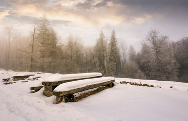 abandoned camping place in winter forest. amazing weather with hoarfrost at sunrise
