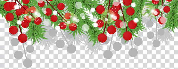 Christmas tree branches with holly berries on a transparent background. Holidays decoration banner. Vector