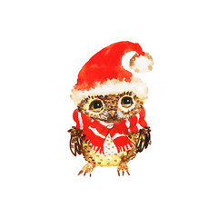 Watercolor Christmas owl in hat. Painting cute cartoon character