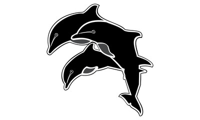 vector of dolphin silhouette