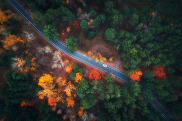Foto op Aluminium Luchtfoto Aerial view of road in beautiful autumn forest. Amazing landscape with empty rural road, trees with green, red and orange leaves in day. Highway through the park. Top view from flying drone. Nature