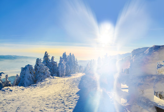 Abstract angel shape on winter landscape, outdoor