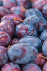 Portion of Plums