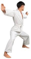 Asian Karate fighter in White Kimono on white background