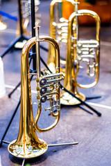 bavarian brass instruments