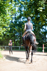 Young lady riding a horse at equestrian school. Training process
