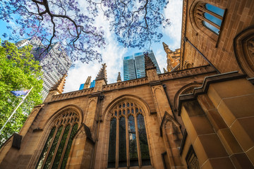 Facade of Saint Andrew's Cathedral in Sydney, Australia in spring