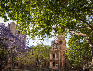 Charming Town Hall Square in spring, with fresh green leafy trees and the purple blooms of jacaranda, in Sydney, Australia