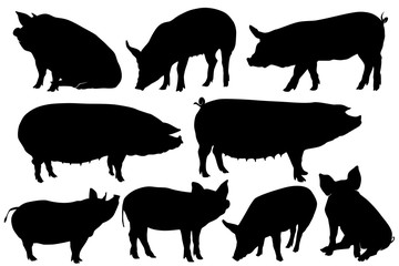 pig pork hog silhouette sets
