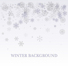 Winter silver background. Fallen defocused snowflakes. Christmas. Vector.
