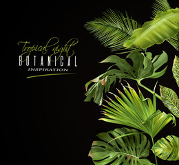 Tropical night banner
