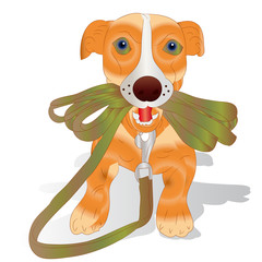 Orange puppy holding a leash, cartoon on a white background,