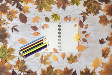 Autumn Frame Border Green Yellow Red Maple Leaves Woman Hands Hold Opened Notebook Pages with Pencil Pen Wooden Country Background Rustic Style Copy Space Flat Lay Top View.