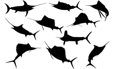 Sail fish Silhouette Vector Graphics