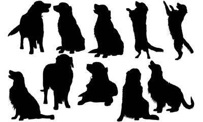 Golden Retriever Dog Silhouette Vector Graphics