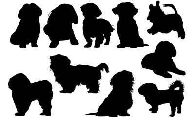 Shih Tzu Dog Silhouette Vector Graphics