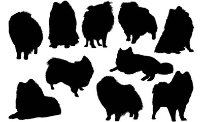 German Spitz Dog Silhouette Vector Graphics
