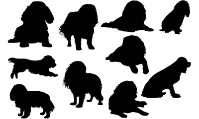 Cavalier King Charles Spaniel Dog Silhouette Vector Graphics