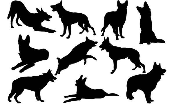 German Shepherd Dog Silhouette Vector Graphics