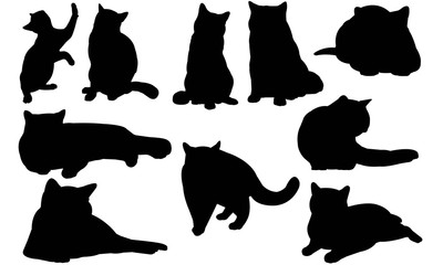 British Shorthair Cat Silhouette Vector Graphics
