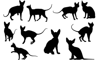 Sphynx Cat Silhouette Vector Graphics