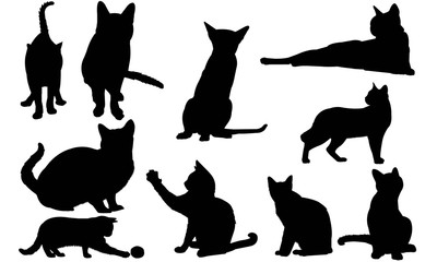 Siamese Cat Silhouette Vector Graphics