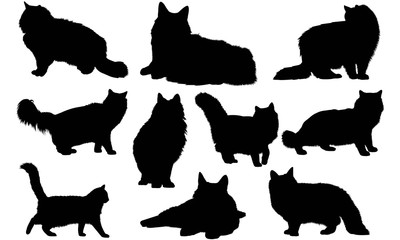 Norwegian Forest Cat Silhouette Vector Graphics