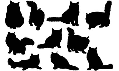 Birman Cat Silhouette Vector Graphics