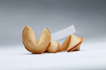 Photo of Chinese cookies with wish on empty gray background.