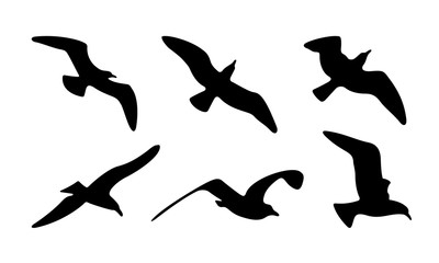Seagulls Silhouettes. Vector Illustration of Seagulls Silhouettes.
