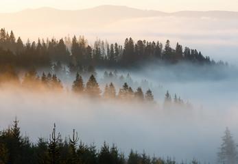 Poster Morning with fog Autumn Carpathians, Ukraine.