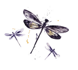 Watercolor set of dragonflies