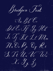 Vector modern calligraphy alphabet