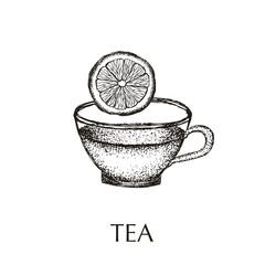 Tea hand drawn