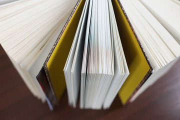 Strony z książki