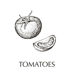 Tomatoes  hand drawn