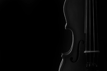 Foto op Canvas Muziek Violin classical music instrument close-up. Stringed musical instrument violin isolated on black background with copy space