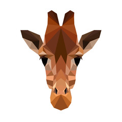 Vector polygonal giraffe isolated on white. Low poly giraffe illustration. Color vector simple animal image.
