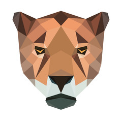 Vector polygonal jaguar isolated on white. Low poly cat illustration. Color vector simple animal predator image.