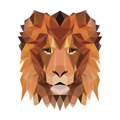 Vector polygonal lion isolated on white. Low poly cat illustration. Color vector simple animal predator image.