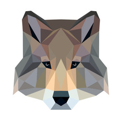 Vector polygonal wolf isolated on white. Low poly dog illustration. Color vector simple animal predator image.