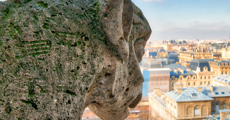 Fototapete - Aerial view of Paris City from the top of Notre Dame Cathedral with stone demon gargoyle